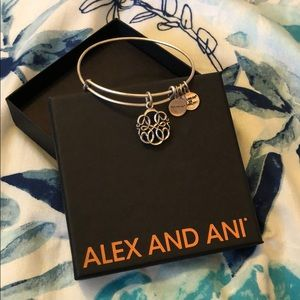 Alex and Ani Silver Bangle Bracelet